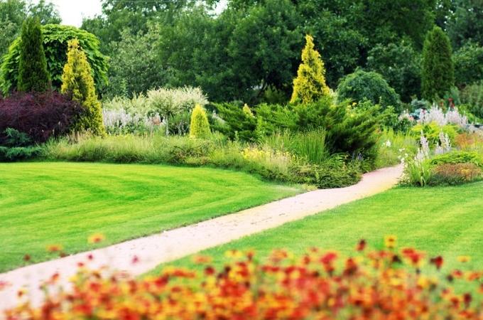 kosa do ogrodu przygotowanie traw ozdobnych do zimy