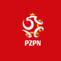 darmowe gadżety polskiej reprezentacji - karta kibica