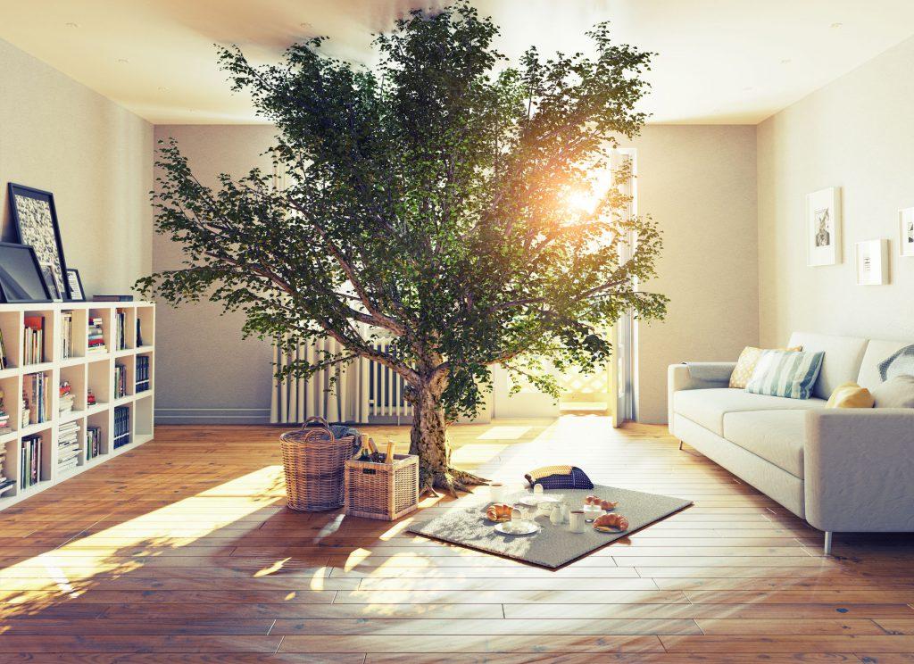 styl eko w pokoju
