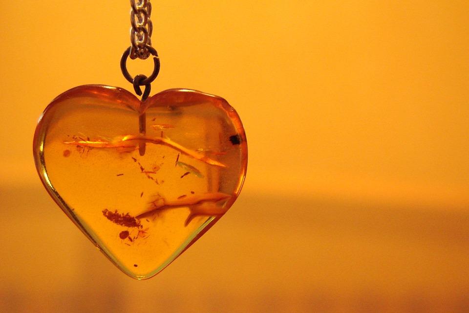 heart-1202129_960_720